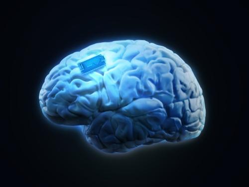 chip.cerebro