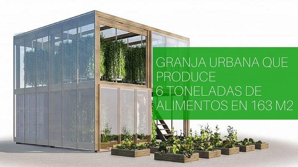 Granja-urbana-que-produce-6-toneladas-de-alimentos