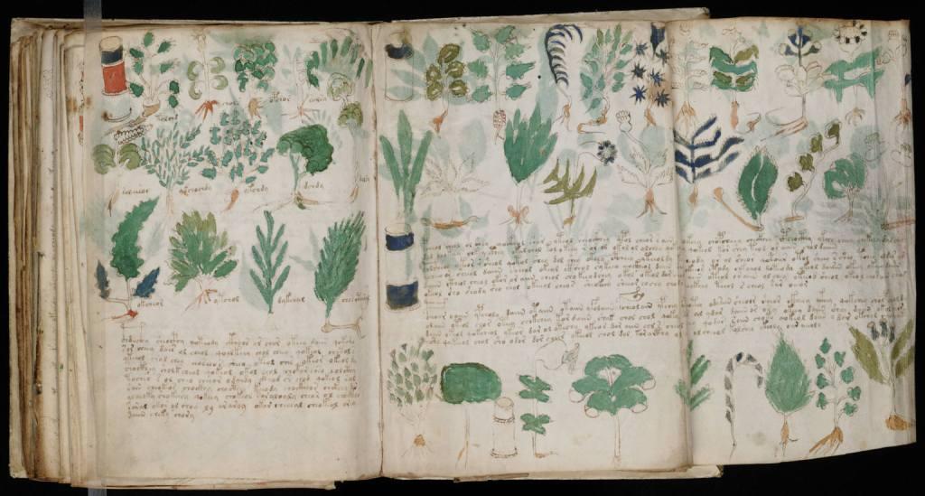 manuscrito-voynich-1
